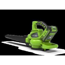 Soffiatore Aspiratore Greenworks (a batteria 40V)