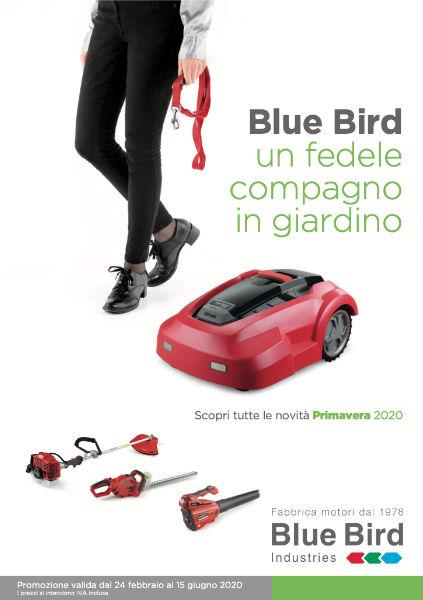 blubird-giornale-primavera.jpg